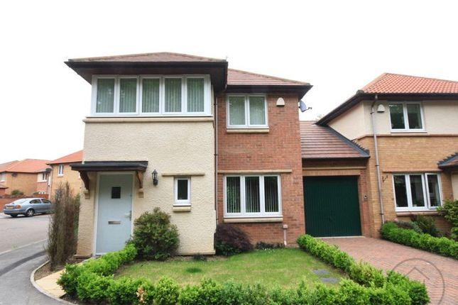Thumbnail Detached house to rent in Timothy Hackworth Drive, Darlington