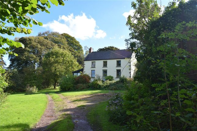 Thumbnail Detached house for sale in Molleston Back, Molleston, Narberth, Pembrokeshire