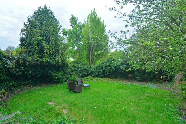 Gdn Lower of Hampstead Lane, Highgate Village, London N6