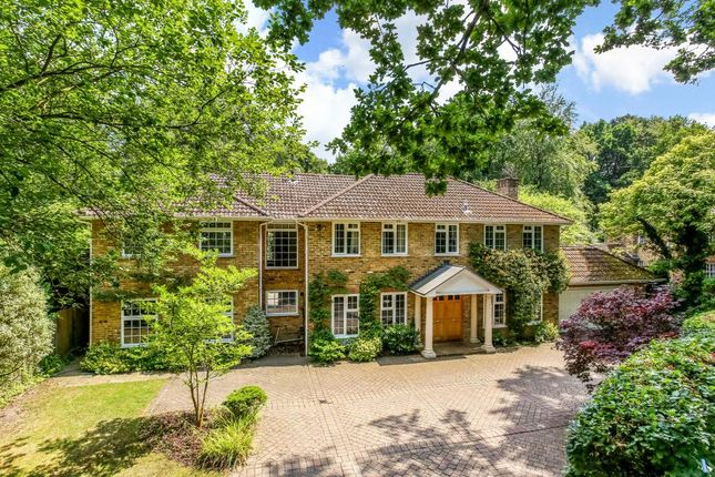 Thumbnail Detached house for sale in Pinecote Drive, Sunningdale, Ascot