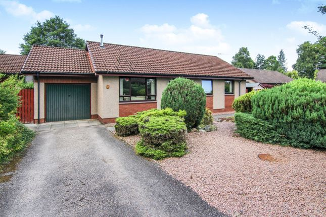 Thumbnail Bungalow for sale in Birch Drive, Dingwall