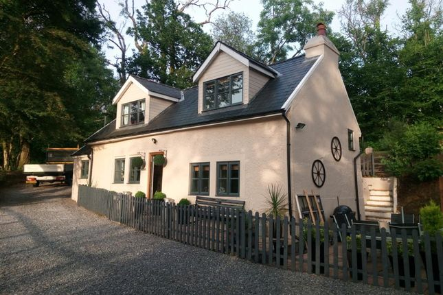 Thumbnail Detached house for sale in Llandyfan, Ammanford