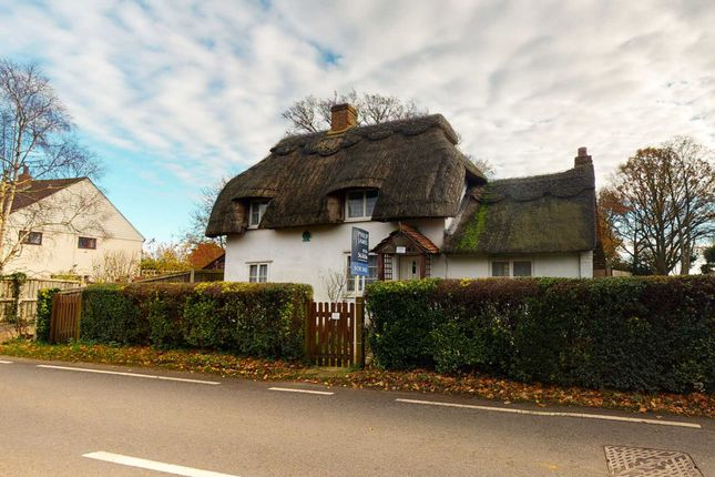 Thumbnail Detached house for sale in Church End, Shalford