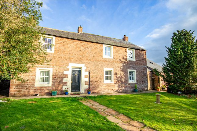 Thumbnail Detached house for sale in Rose Dene, Hornsby, Brampton