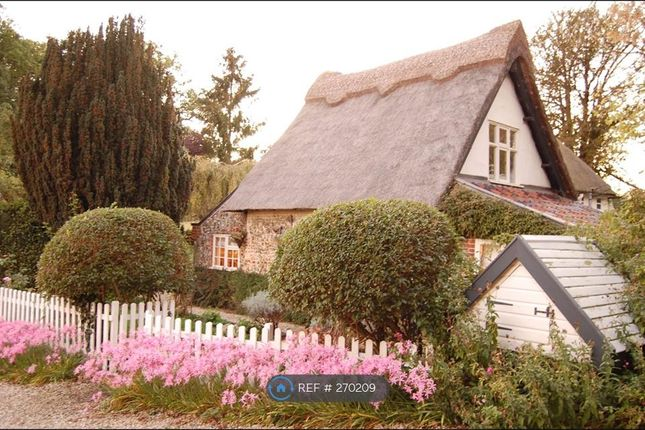 Thumbnail Detached house to rent in Thatched Cottage, Intwood