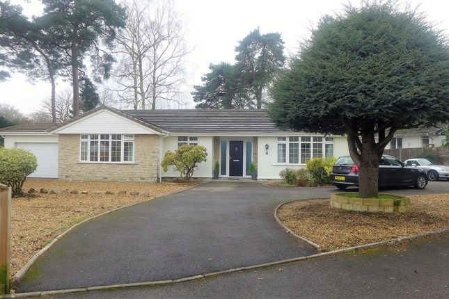 Thumbnail Detached bungalow for sale in Heather Drive, Ferndown