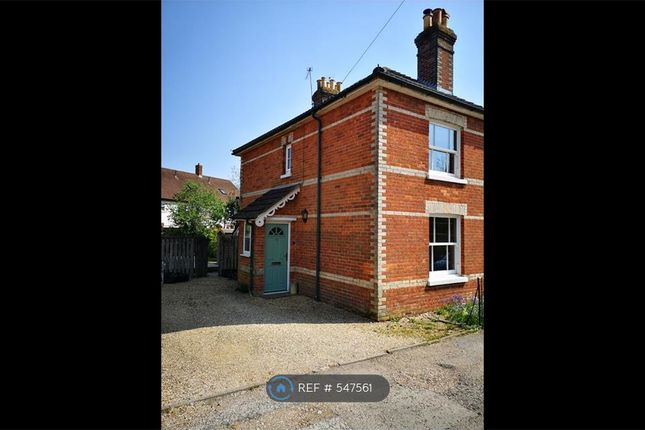 Thumbnail Semi-detached house to rent in Nursery Road, Ringwood