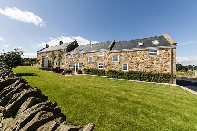 Thumbnail Country house for sale in Grey Mare Hill Cottage Farm, Kiln Pit Hill, Northumberland