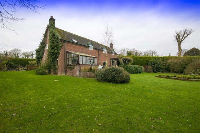 Thumbnail Detached house for sale in Llansantffraid