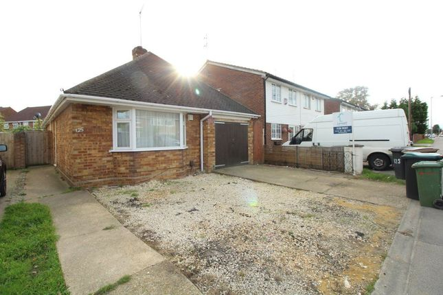 Thumbnail Bungalow to rent in Toddington Road, Luton