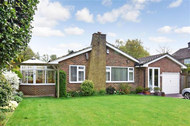 Thumbnail Bungalow for sale in Dorset Avenue, East Grinstead, West Sussex