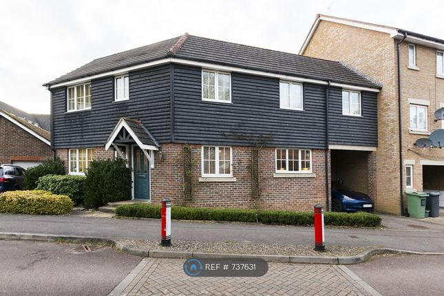 Thumbnail Detached house to rent in Richards Field, Chineham, Basingstoke