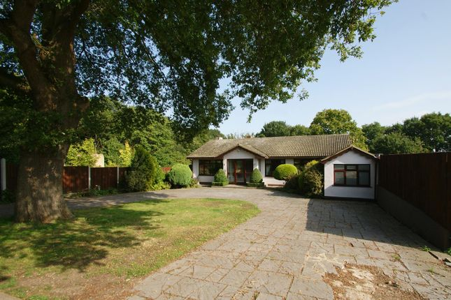 Thumbnail Detached bungalow for sale in Warwick Road, Rayleigh
