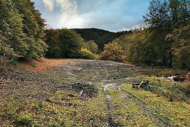 Thumbnail Land for sale in Land At Cefn Y Krib, Pantygasseg