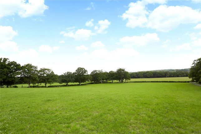 Grounds of Ridgelands Farm, Kent Street, Wineham, Nr Cowfold, Horsham, West Sussex RH13