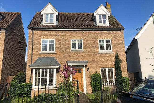 Thumbnail Property to rent in Juniper Road, Red Lodge, Bury St. Edmunds