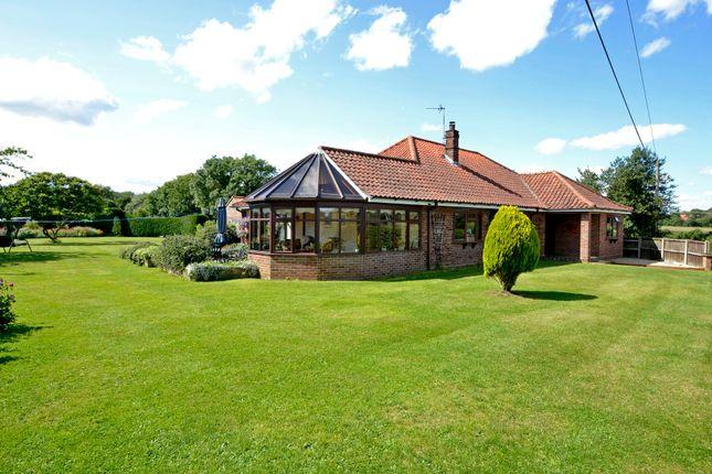 Thumbnail Detached bungalow for sale in East Carleton, Norwich, Norfolk