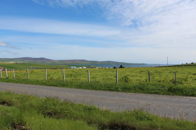 Thumbnail Detached house for sale in 7 Exclusive Homes At Ward Hill, Stromness, Orkney