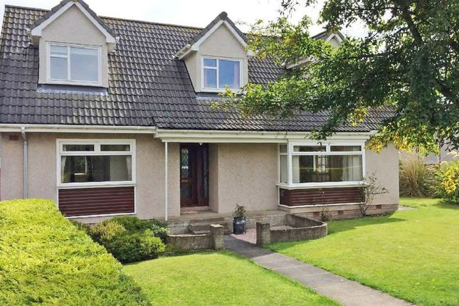 Thumbnail Property for sale in Murray Row, Balmullo, St. Andrews