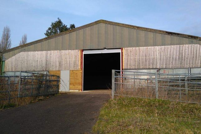 Thumbnail Warehouse to let in Unit F2, Woolmer Farm, Bramshott, Liphook, Hampshire