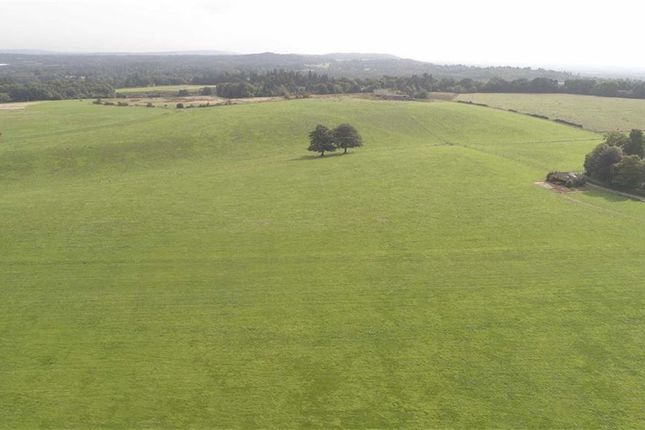Farm for sale in Haslemere Road, Brook, Surrey