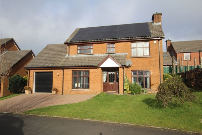 Thumbnail Detached house to rent in Glebe Manor, Newtownabbey