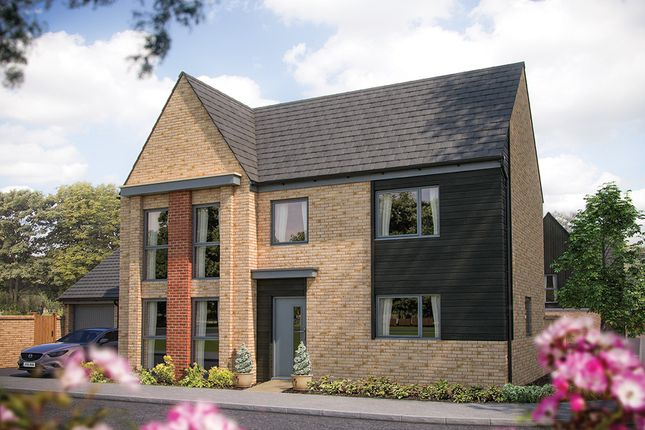 "Thumbnail Detached house for sale in ""The Allbrook"" at Station Road, Longstanton, Cambridge"