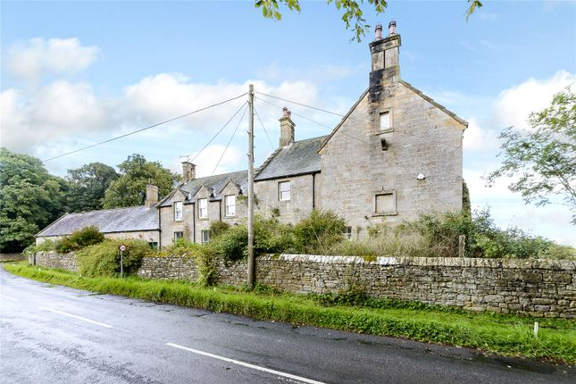 Thumbnail Bungalow for sale in Two Queens, Cambo, Morpeth, Northumberland