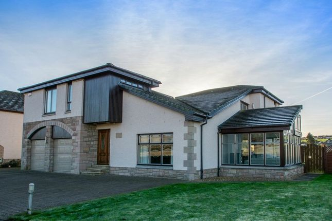 Thumbnail Detached house for sale in Grants Wynd, Bridgefoot, Dundee