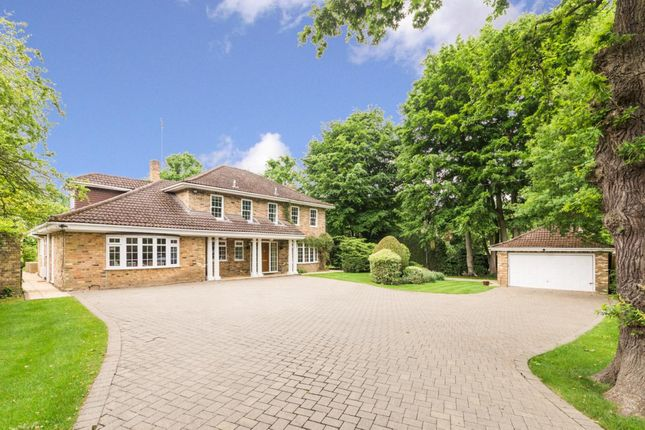 Thumbnail Detached house to rent in Old Avenue, West Byfleet