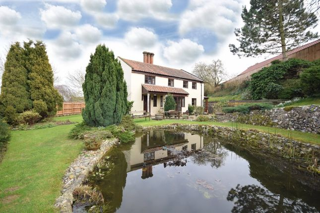 Thumbnail Detached house for sale in Stocks Hill, Bawburgh, Norwich