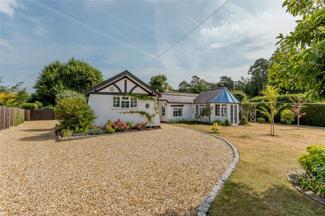 Thumbnail Bungalow for sale in Woodlands Lane, Windlesham, Surrey