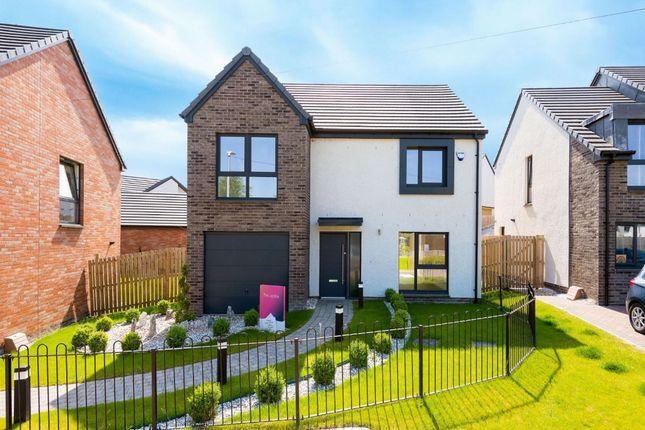 Thumbnail Detached house for sale in The Jardine, Branshill Road, Sauchie, Clackmannanshire