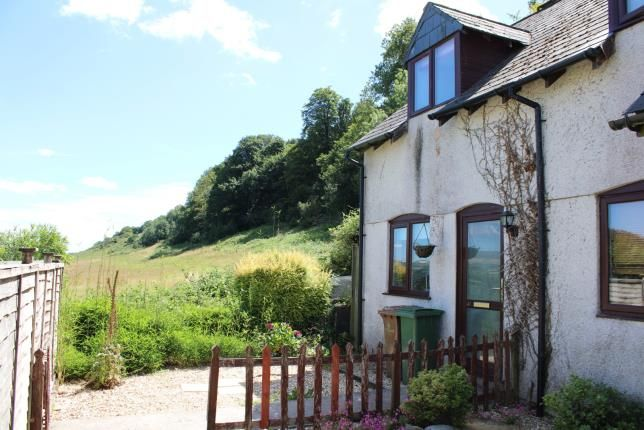 Thumbnail Terraced house for sale in Plympton, Plymouth, Devon