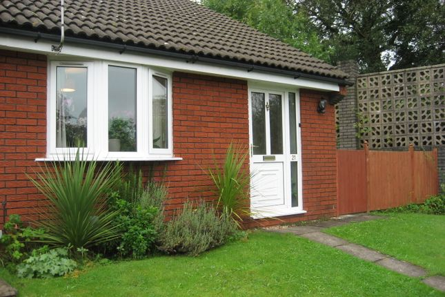 Thumbnail Bungalow to rent in Llandaff, Cardiff