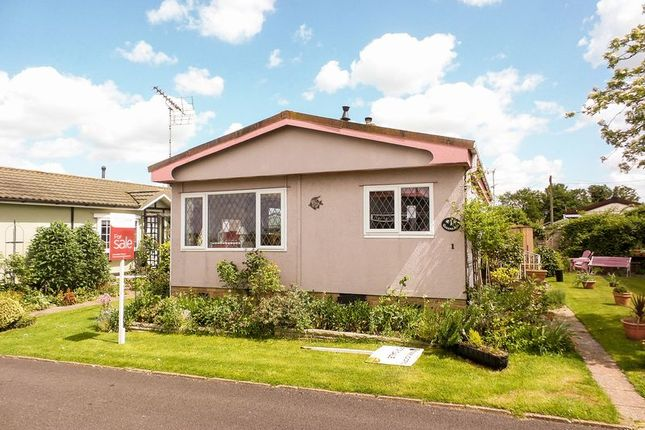 Thumbnail Detached bungalow for sale in Queens Avenue, Tower Park, Hullbridge, Hockley