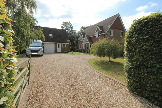 Thumbnail Detached house for sale in Westcourt Drive, Bexhill-On-Sea