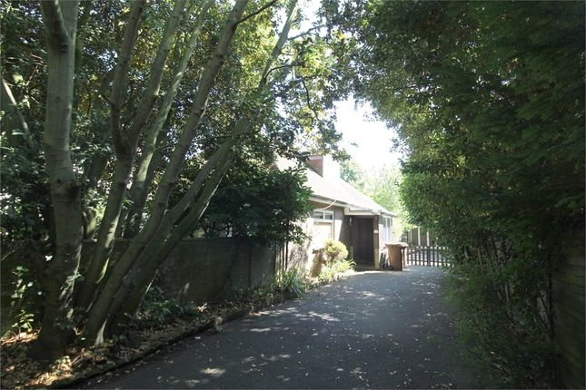Thumbnail Detached bungalow for sale in Park Avenue, Gillingham, Kent.