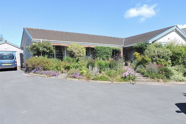 Thumbnail Detached bungalow for sale in Kings Road, Llandybie, Ammanford