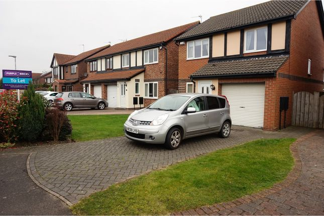 Thumbnail Detached house to rent in Henshaw Grove, Whitley Bay