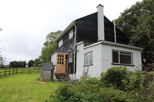Thumbnail Detached house to rent in Halwell, Totnes