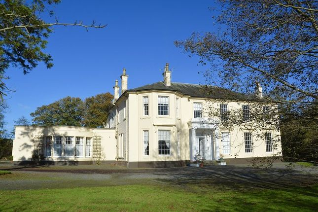 Thumbnail Flat for sale in Dalry
