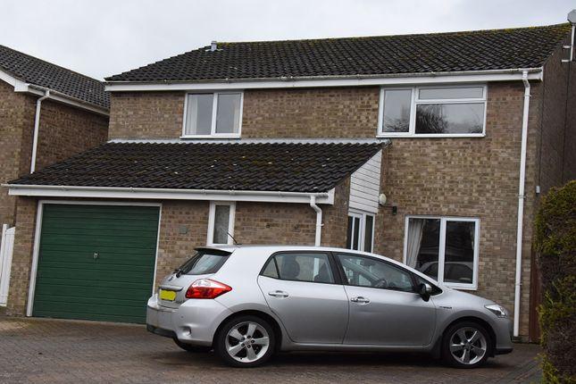 Thumbnail Detached house for sale in Copse Close, Bury St. Edmunds