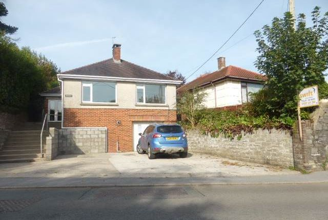 Thumbnail Bungalow to rent in Lime Grove Avenue, Carmarthen, Carmarthenshire