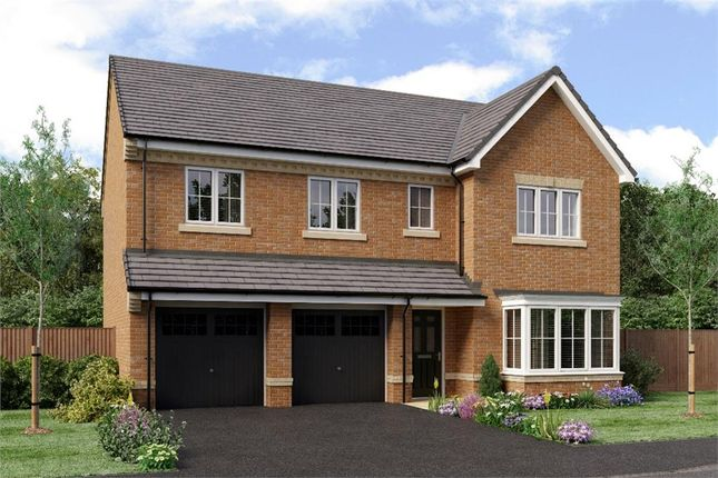 "Thumbnail Detached house for sale in ""The Buttermere"" at Weldon Road, Cramlington"