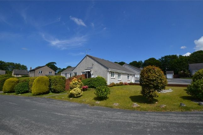 Semi-detached bungalow for sale in Windsor Grove, Bodmin