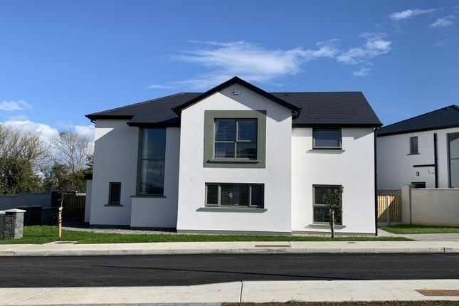 Thumbnail Detached house for sale in Chestnut Hill, Clonard Great, Wexford Town, Wexford County, Leinster, Ireland