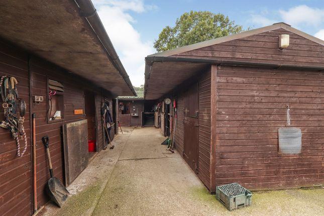 Thumbnail Detached bungalow for sale in Sicklebrook Lane, Coal Aston, Dronfield
