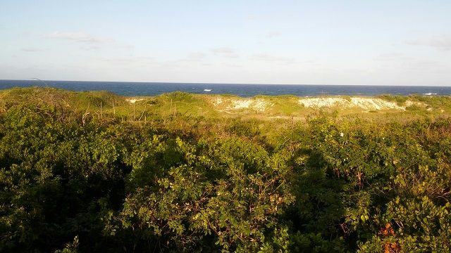Land for sale in Millers, The Bahamas