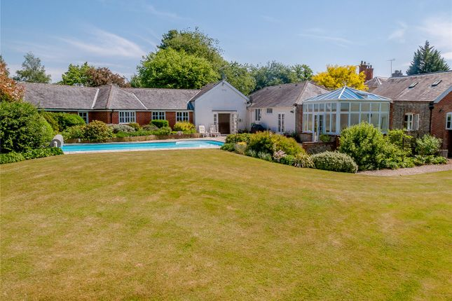 Thumbnail Bungalow for sale in Church Lane, Holybourne, Hampshire